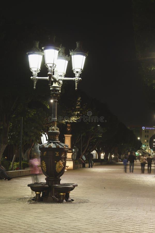 Fonte de ?gua velha iluminada na noite, Leon, Guanajuato Formato vertical foto de stock royalty free