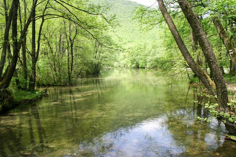 Fonte de Bósnia fotografia de stock