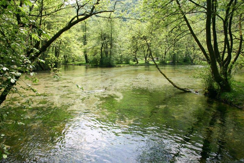 Fonte de Bósnia imagem de stock