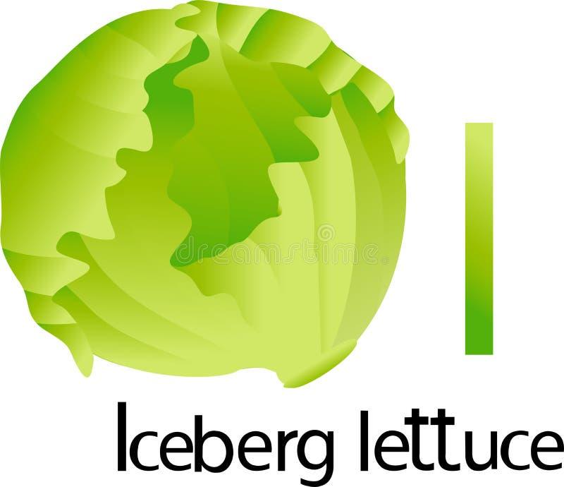 Fonte dell'illustratore i con la lattuga di iceberg illustrazione vettoriale