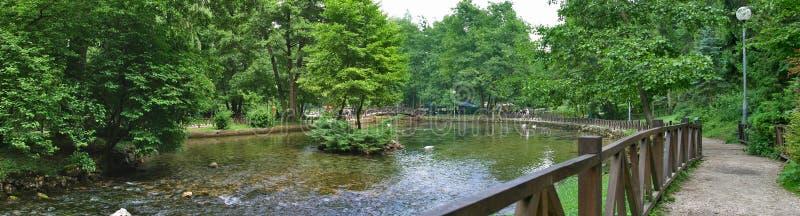 Fonte di fiume Bosna immagini stock