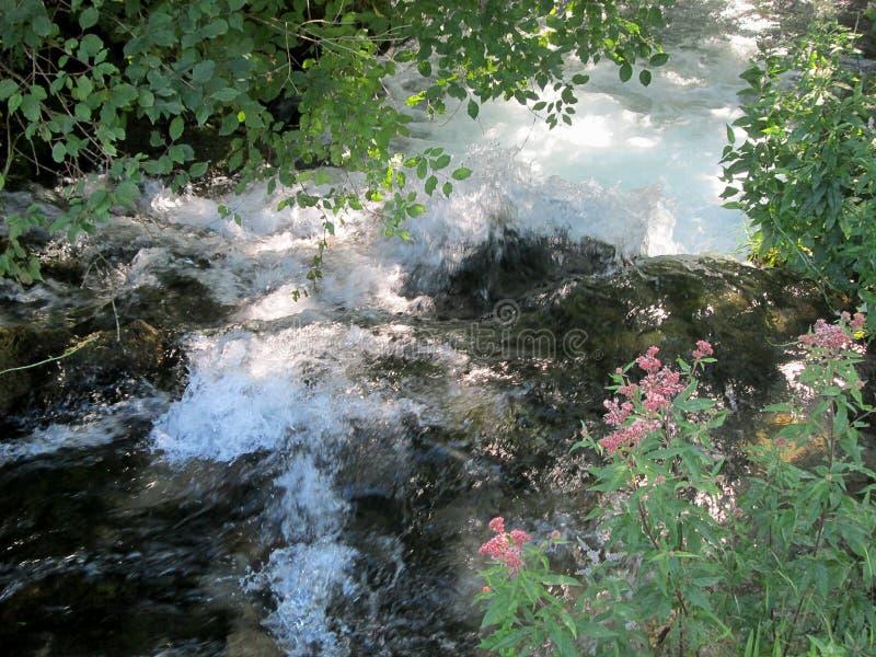 Fonte do rio Resava em Lisine, Sérvia fotos de stock