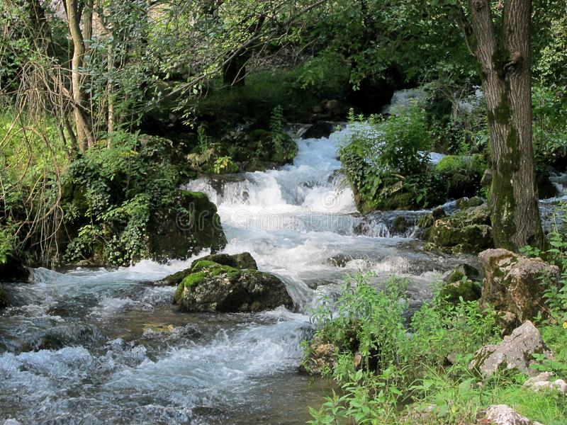 Fonte do rio Resava em Lisine, Sérvia imagem de stock royalty free