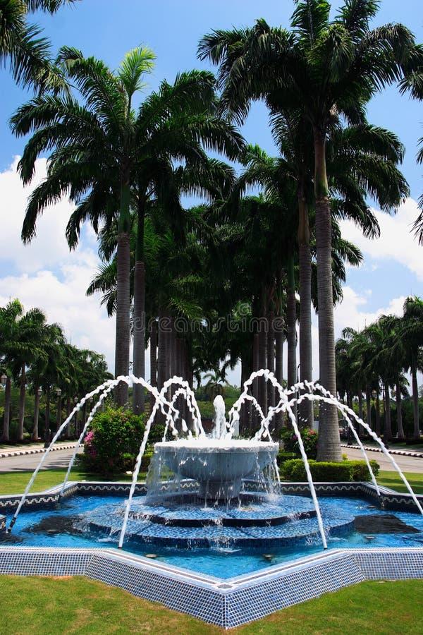 Fonte e palmas da mesquita de Brunei fotografia de stock royalty free
