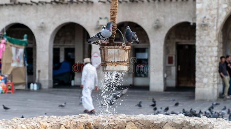 Fonte e pombos bons velhos na frente das construções de Al Fanar, situadas em Souq Waqif, Doha, Catar imagem de stock royalty free
