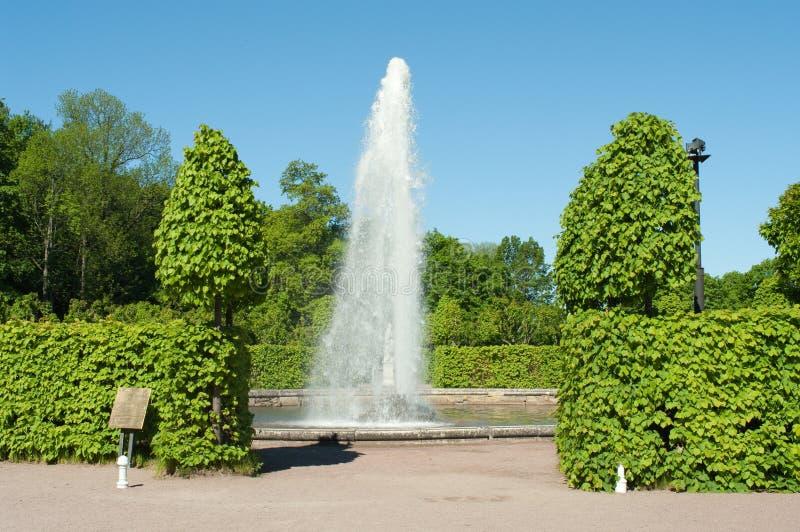 Fonte em Peterhof fotografia de stock royalty free