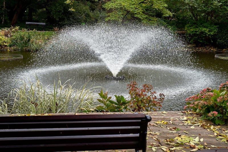 Fonte famosa no jardim japonês bonito no jardim botânico de Wroclaw, Polônia Paisagem da cidade fotografia de stock royalty free