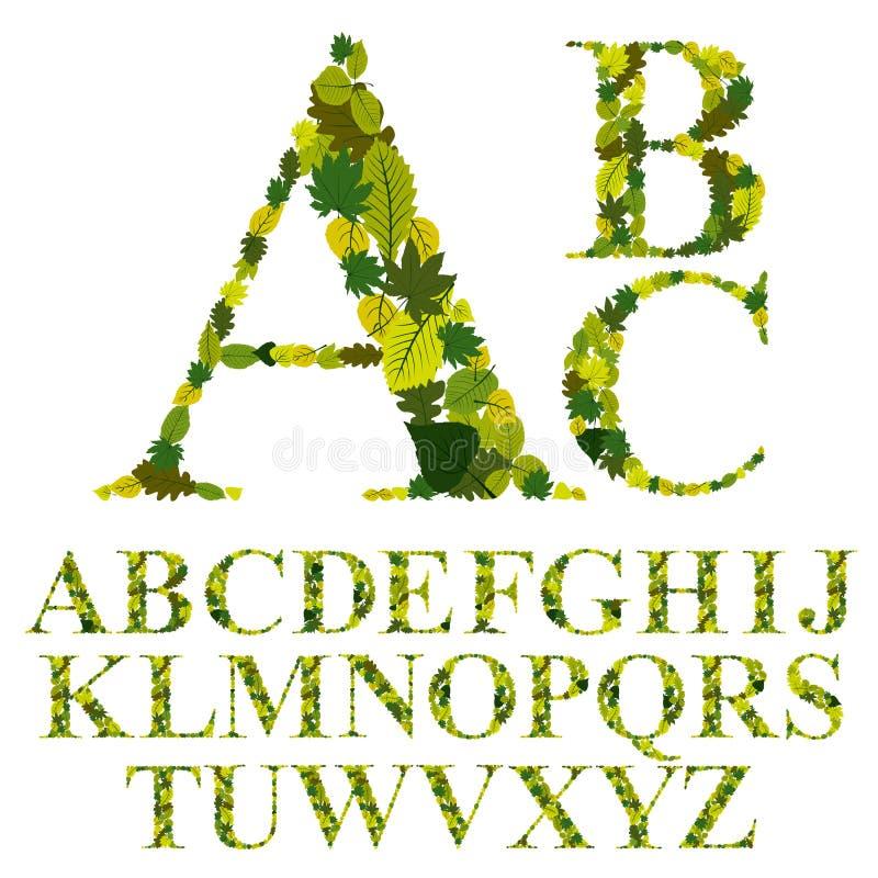 A fonte feita com folhas, letras florais do alfabeto ajustou, vector o desig ilustração royalty free