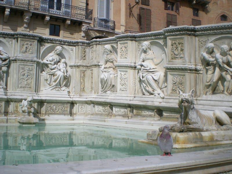 Fonte Gaia (fuente de la alegría) en Siena Italia, Europa foto de archivo