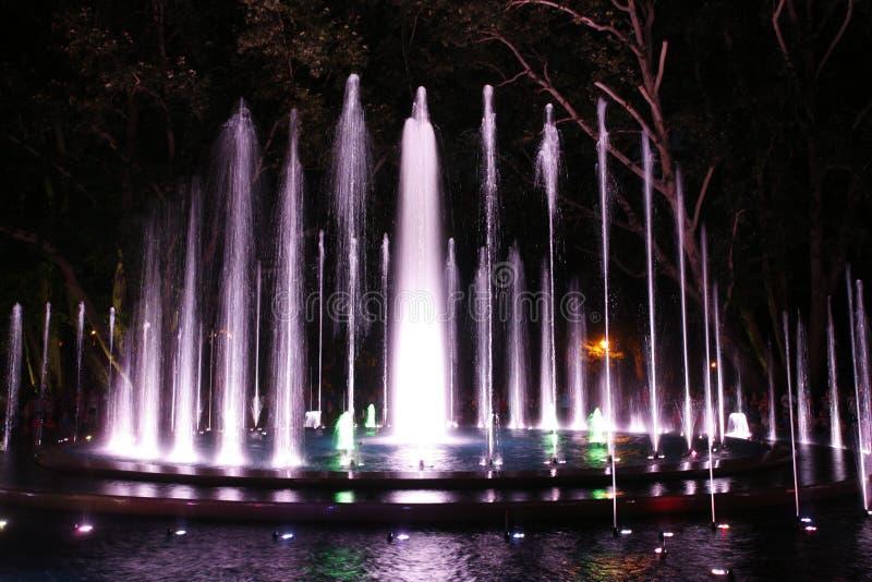 Fonte mágica em Margaret Island Budapest na noite fotos de stock royalty free