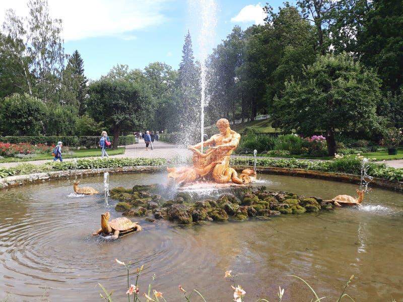 Fontein 'Serre in het lagere park van Peterhof stock afbeelding