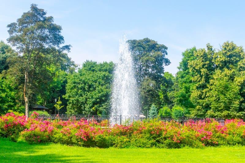 Fontein bij openbaar park in Wejherowo, Polen stock foto's