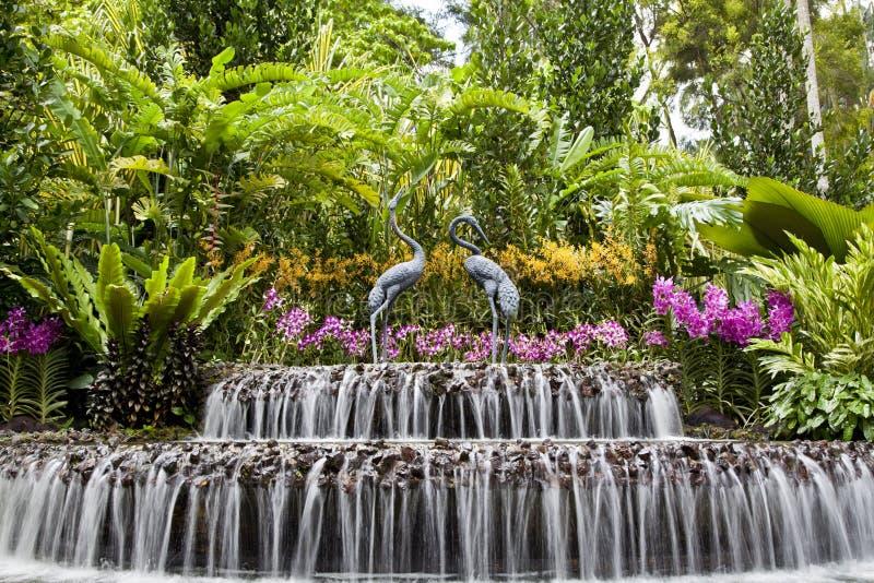 Fontein bij Orchideetuin, de Botanische Tuin van Singapore stock fotografie