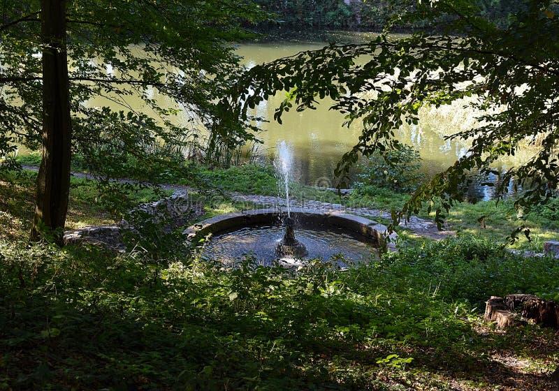 Fontein in het groene park royalty-vrije stock afbeelding