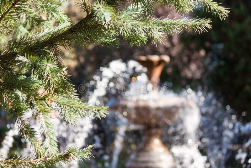 Fontein in het park met spartakken Achtergrond royalty-vrije stock fotografie