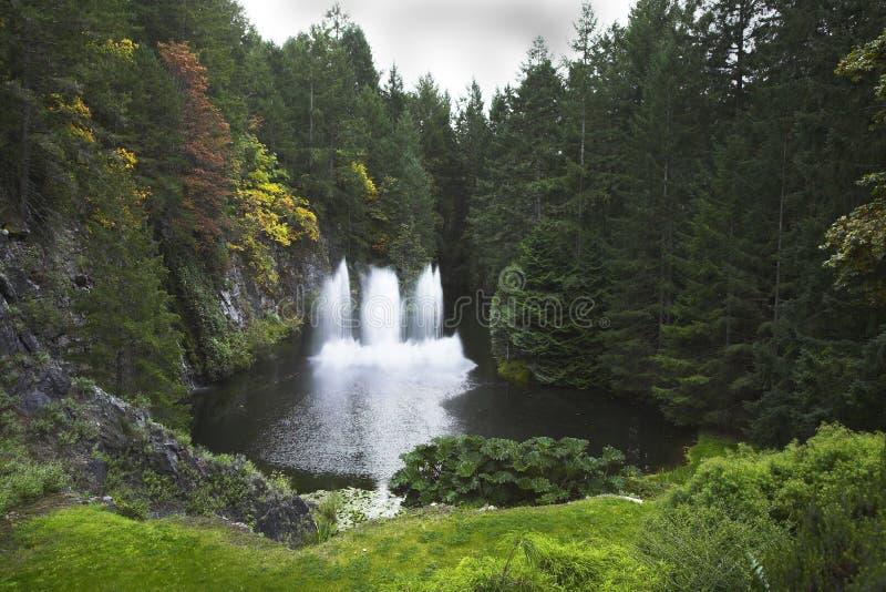 Fontein in houten meer. royalty-vrije stock afbeeldingen