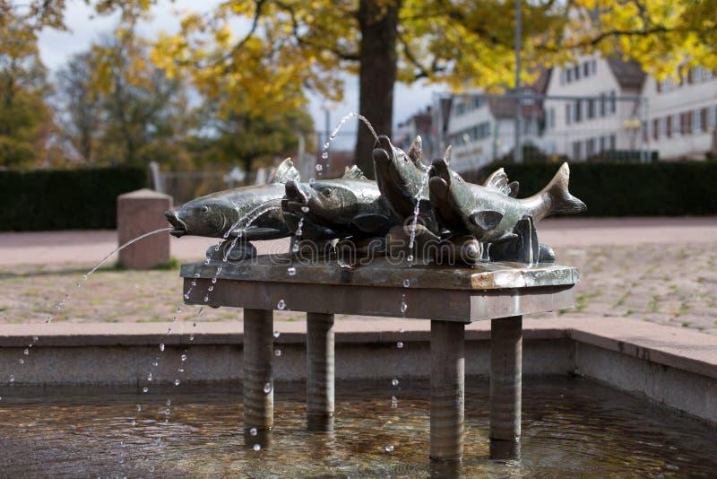 Fontein met vissen bij een markt in freudenstadt royalty-vrije stock foto