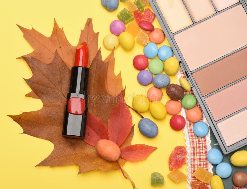 Fontes da beleza, batom, paleta, pó, vermelho, ocultador, vista superior fotos de stock