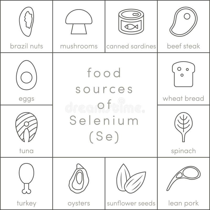 Fontes do alimento de selênio ilustração royalty free