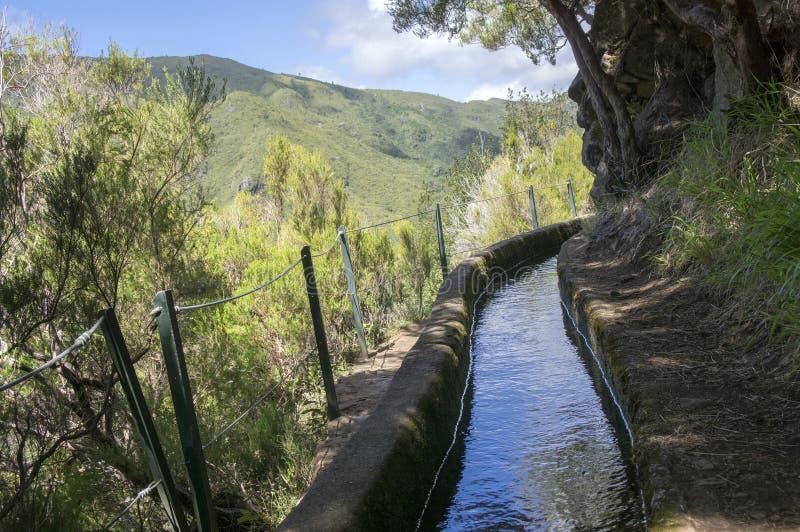 Fontes Levada das 25, взгляд детали оросительного канала, touristic тропа, Rabacal, остров Мадейры стоковые изображения