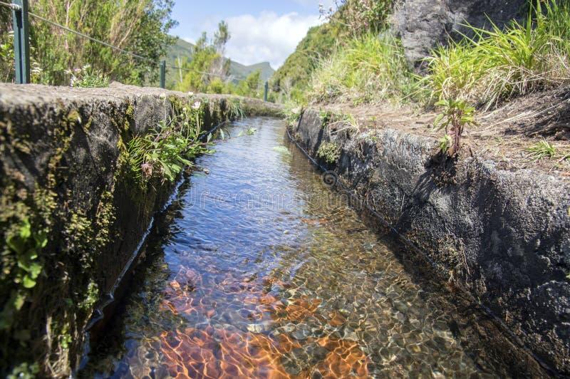 Fontes Levada das 25, взгляд детали оросительного канала, touristic тропа, Rabacal, остров Мадейры, Португалия стоковые изображения