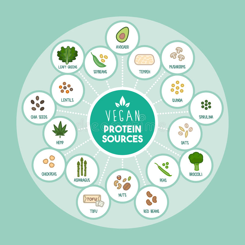 Fonti della proteina del vegano illustrazione di stock