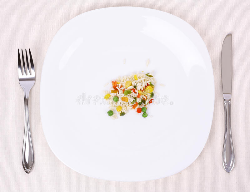 Food. Small portion of food on a big plate stock photography