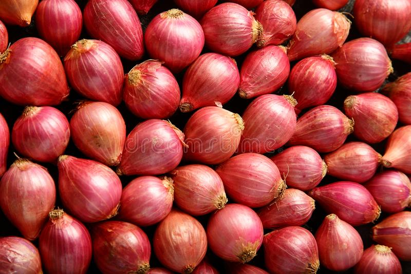 Food abstract Fresh red onion texture stock photos