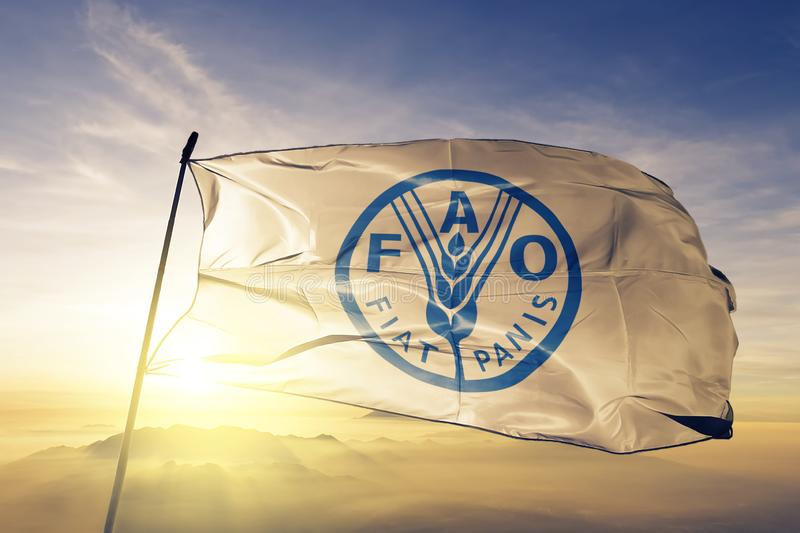 Food and Agriculture Organization of the United Nations FAO flag textile cloth fabric waving on the top sunrise mist fog stock illustration