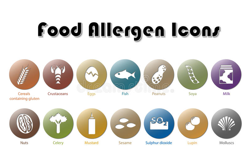 Food Allergen Icons. Illustration of Food Allergen Icons stock illustration