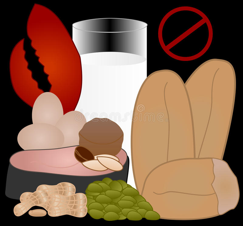 Food Allergies: the Top 8 Allergens. Food Allergies: the Top 8 Food Allergens in the U.S. are milk, eggs, peanuts, tree nuts, fish, shellfish, wheat, and vector illustration