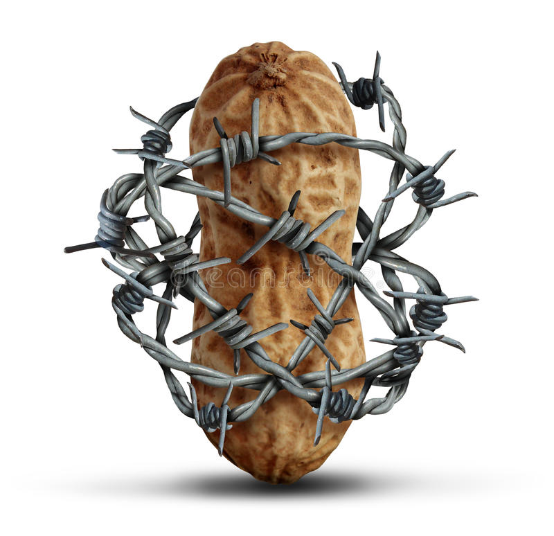 Food Allergy Prevention. And avoiding nuts and other allergic risk ingredients caution as a peanut wrapped in barbed wire as a symbol for protection and health vector illustration