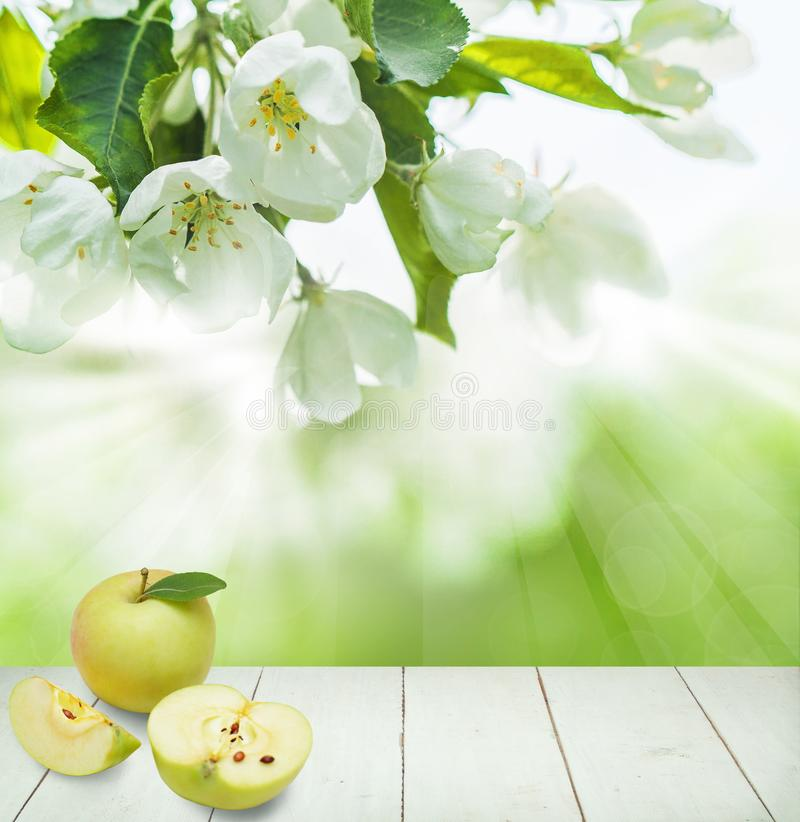 Food Background with Apple Fruit, Spring Flowers royalty free stock photos