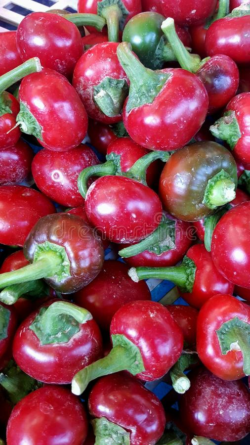Food background, a lot of cherry bomb red peppers royalty free stock photo