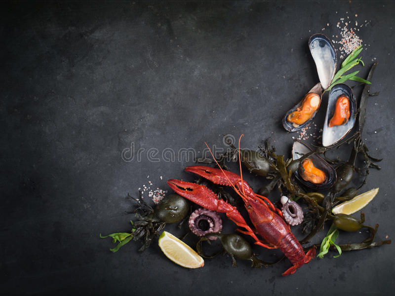 Food background royalty free stock photos