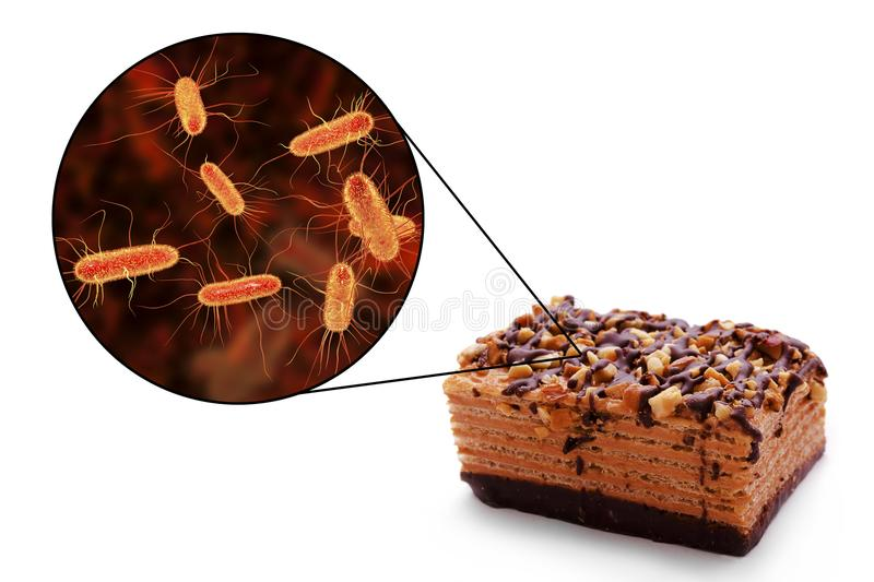 Food borne infections, medical concept. Escherichia coli food borne infections, medical concept, 3D illustration showing cake as a common source of food stock photography