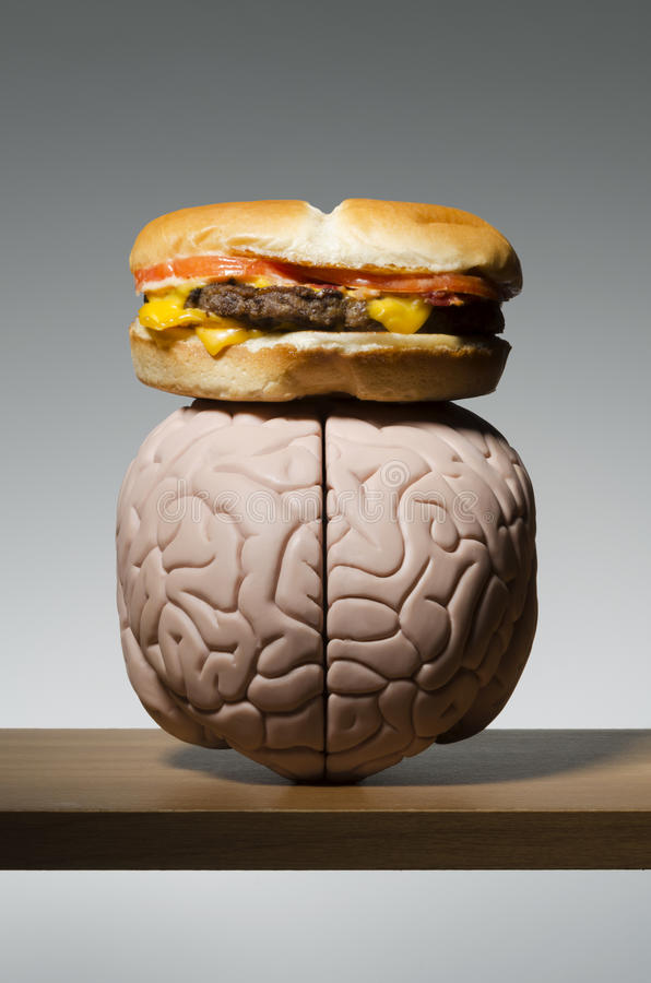 Food on the brain royalty free stock image