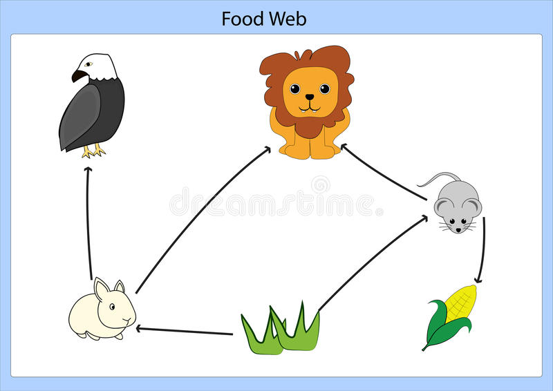 Food chain. Vector illustrator and computer design royalty free illustration