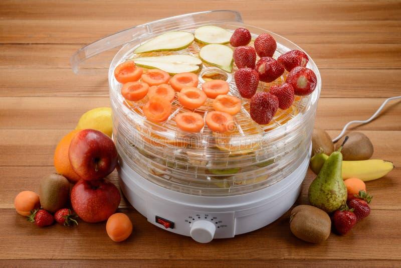 Food dehydrator and fruits stock photos