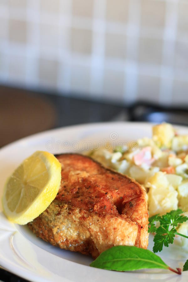 Food dish 2. Image of a salmon dish with a hint of lemon stock image