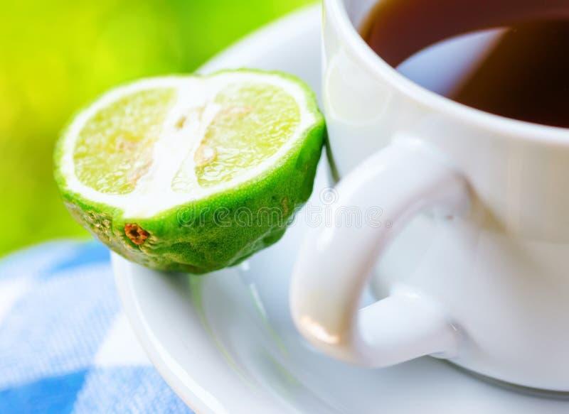 Earl Grey tea with bergamot stock image