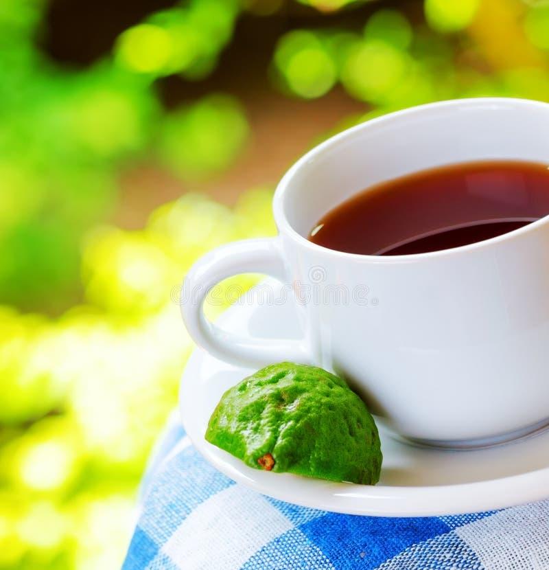 Earl Grey tea with bergamot royalty free stock photos