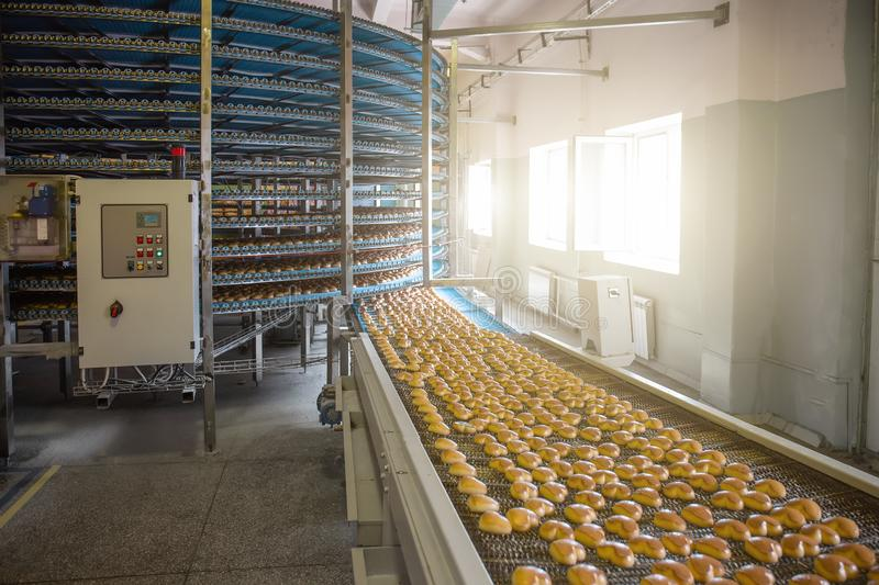 Food factory fabrication, industrial conveyor belt or line with process of preparation of sweet cookies, food production royalty free stock images