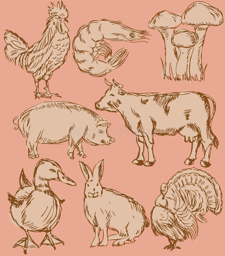 Food flavor icons set: farm animals. Food flavor icons vector set: farm animals - various retro-style illustrations vector illustration