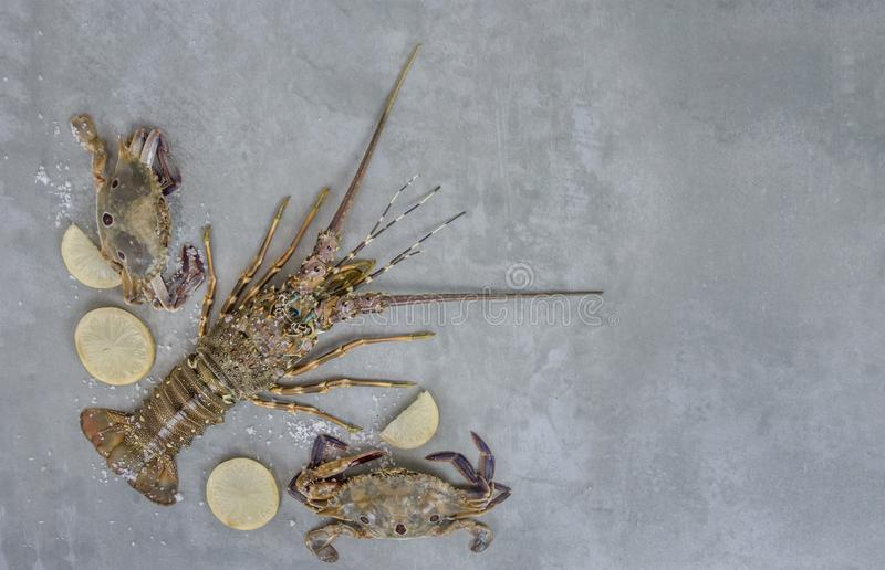 Food frame with crustacean stock photography