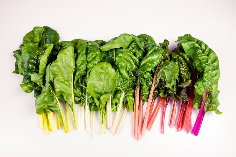 Food gradient of organic rainbow chard: spray-free leafy greens royalty free stock photos