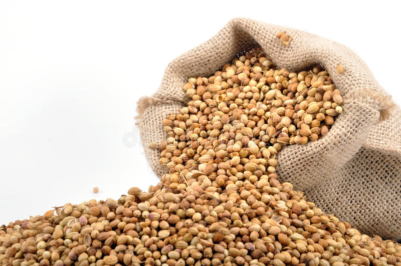 Food grains. Uncooked food grains in sack stock images