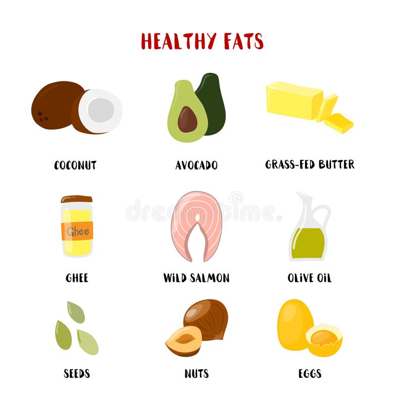 Food with Healthy fats and oils icons set isolated on white. Vector cartoon style illustration vector illustration