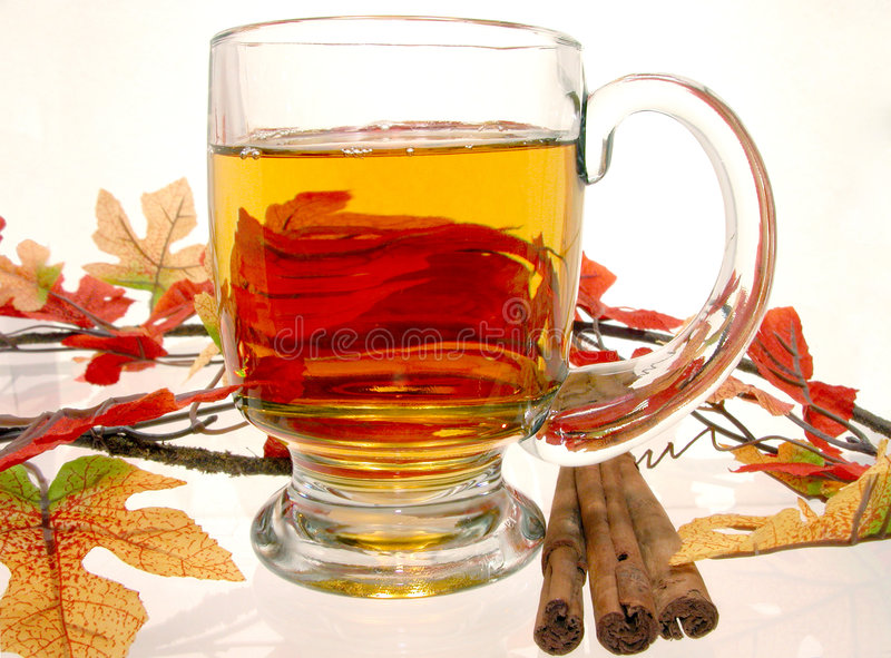 Food: Hot Apple Cider. Glass mug of hot apple cider surrounded by fall decorations and cinnamon sticks