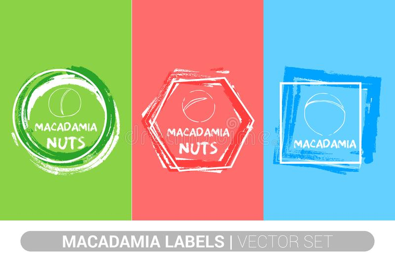 Macadamia nuts colorful label set. Raw organic nuts Badge shapes. Creative Nut tags. vector illustration